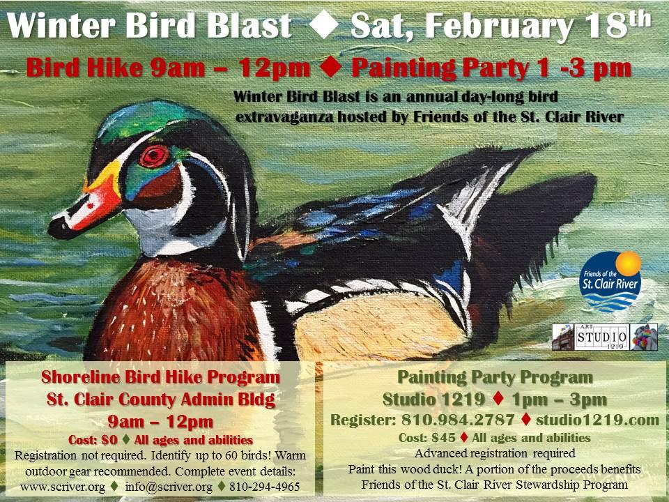 winterbirdblast